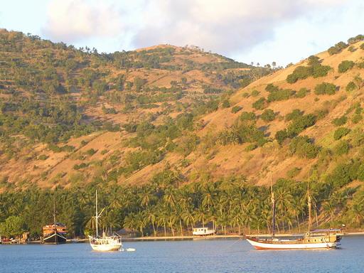 Дайвинг сафари Индонезия остров Комодо, залив Нара