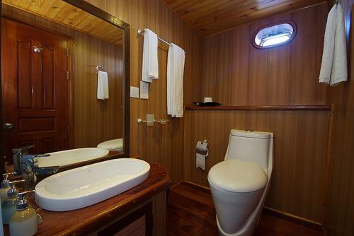 Дайв сафари мальдивы Ark Royal Туалет в стандартной каюте