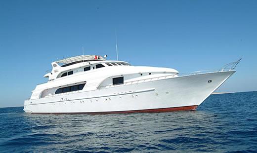 m/y Blue seas дайвинг сафари Красное море