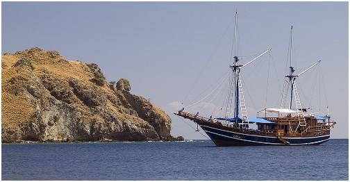 Индонезия дайвинг сафари яхта S/M/Y Felicia
