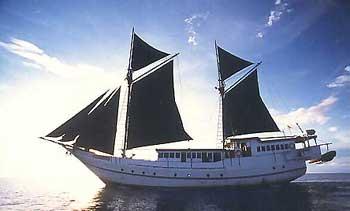Индонезия дайвинг сафари яхта S/M/Y Ondina